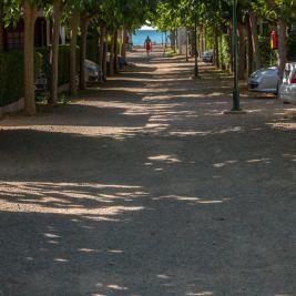 Carrers del Camping Playa y Fiesta Costa Daurada